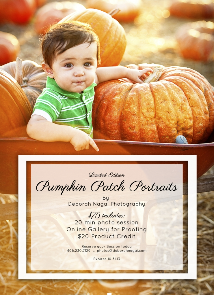 2013PumpkinPromotion 741x1024 Pumpkin Patch Portrait Sessions