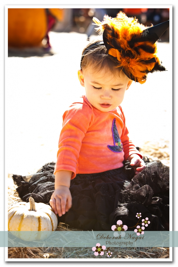 Pumpkin I 03 682x1024 Morgan Hill Photographer :: Pumpkin Patch Photos :: Miss M and Baby I
