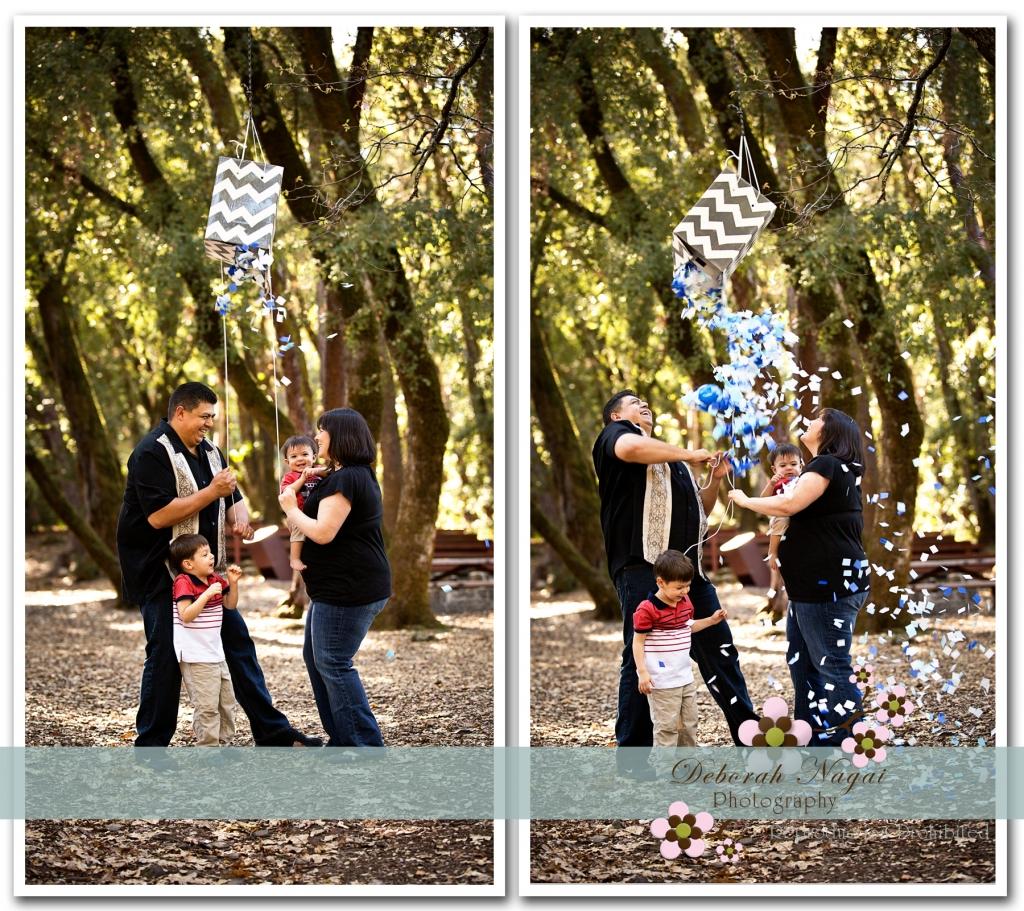 DawnMat 041 1024x911 Morgan Hill Photographer :: Brickner Family :: Gender Reveal