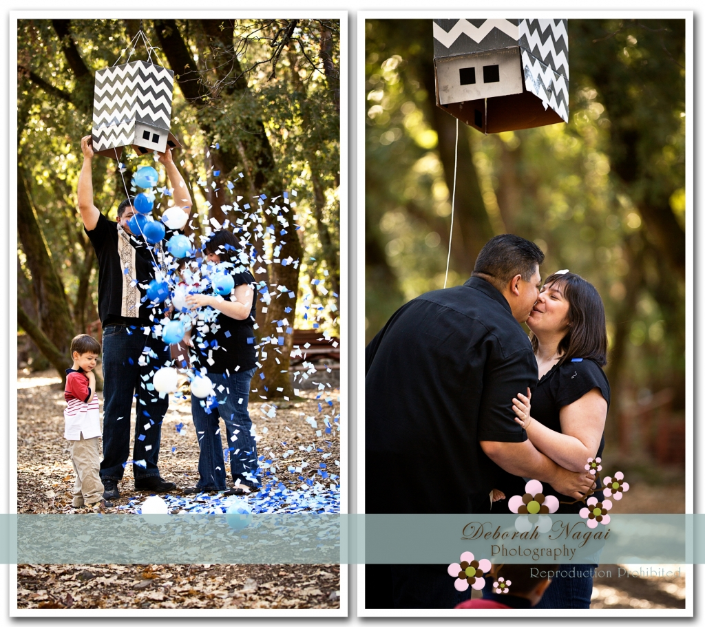 DawnMat 06 1024x911 Morgan Hill Photographer :: Brickner Family :: Gender Reveal